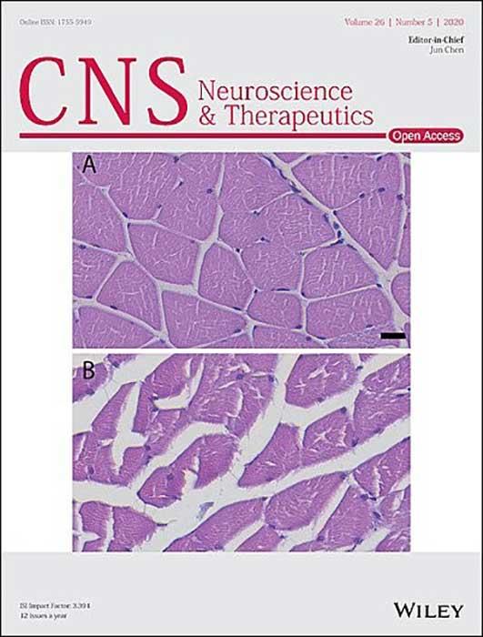 cns neuroscience therapeutics